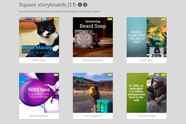 6 New Square Storyboards for Businesses and Non-Profits