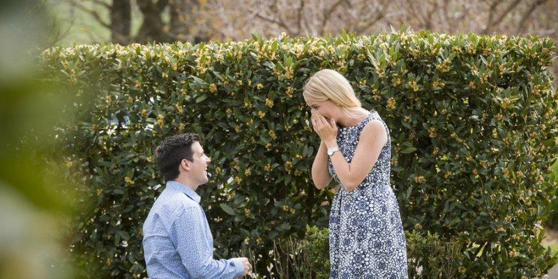 Die Schonsten Heiratsantrage Aus Dem Hochzeitsplaza Forum