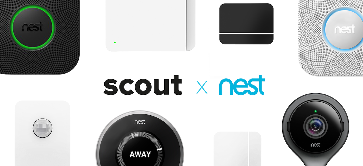 Scout and Nest