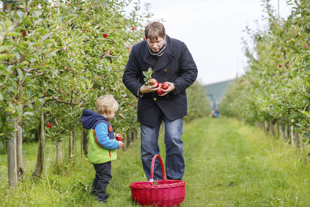 gardening-with-toddlers