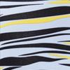 color-zebra-skylight