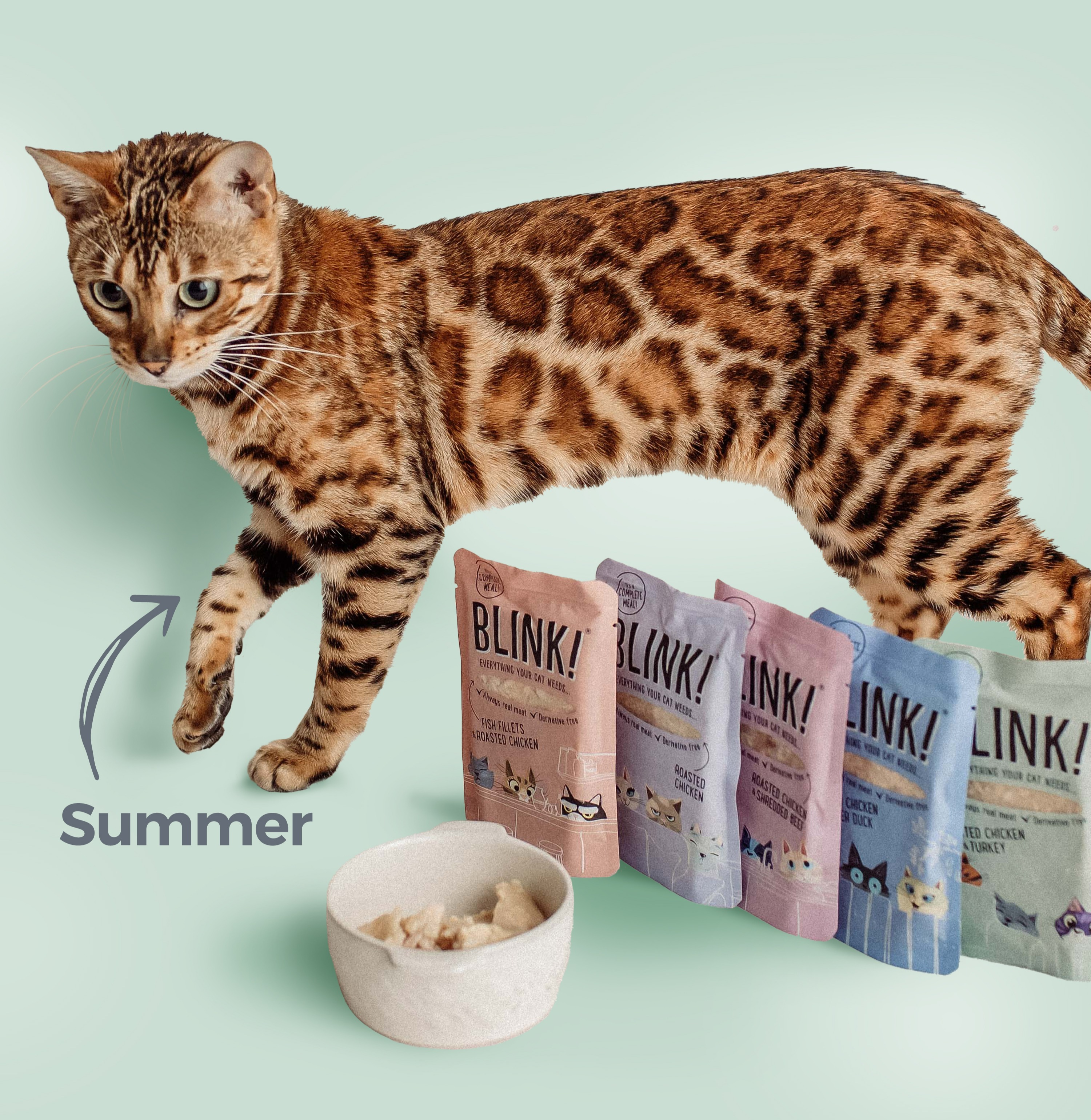 Leopard print cat with Blink food