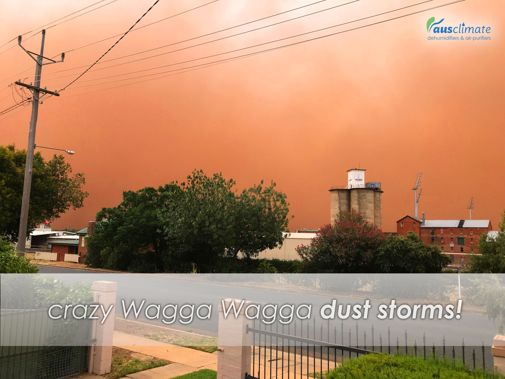 Crazy-Wagga-Dust-Storms
