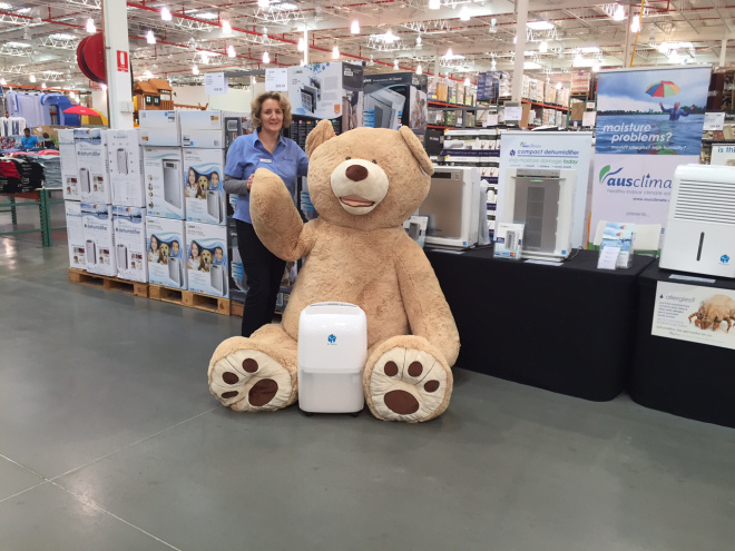 Costco Bear