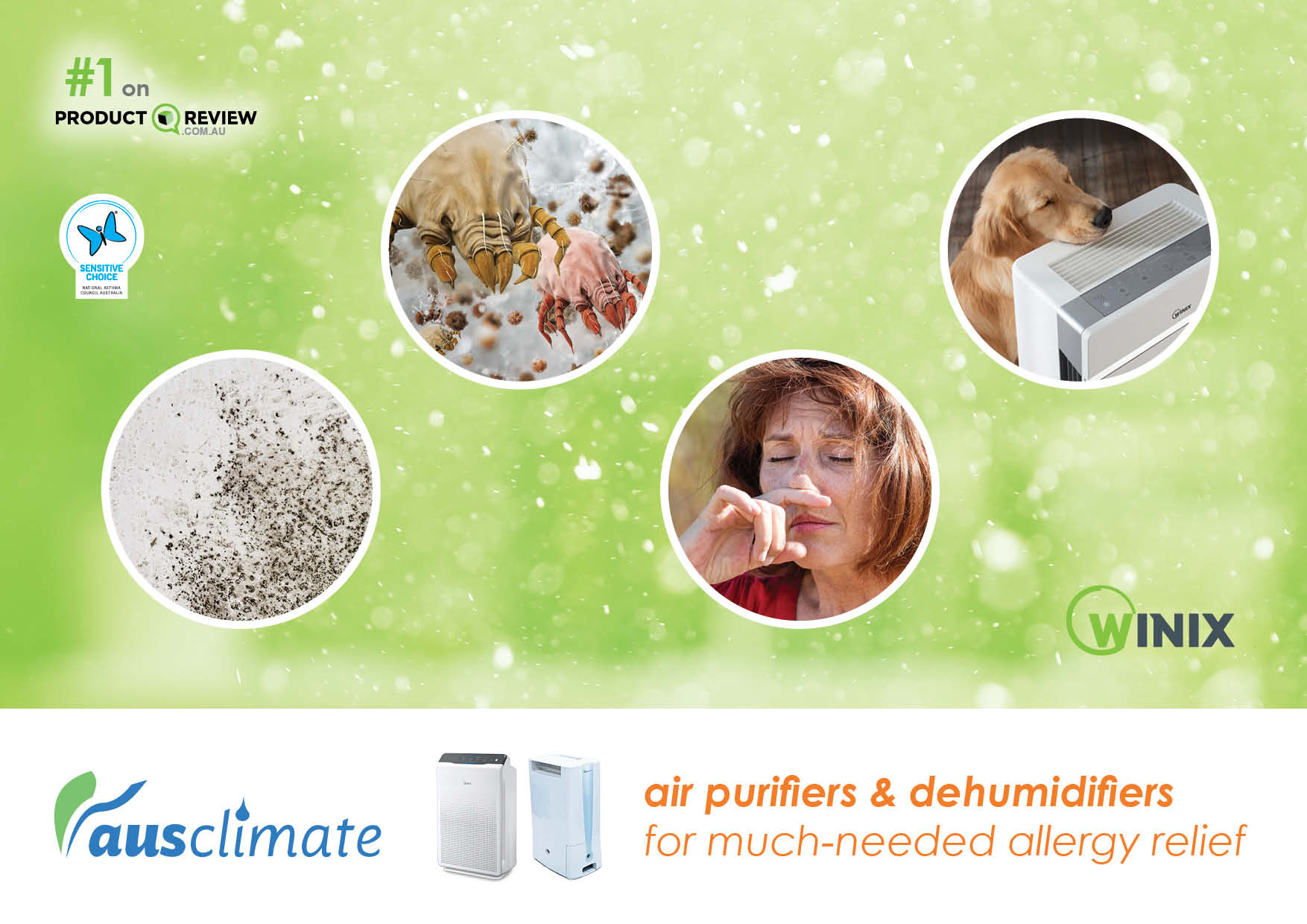 Dehumidifiers and Air Purifiers from Allergies [Social Media]