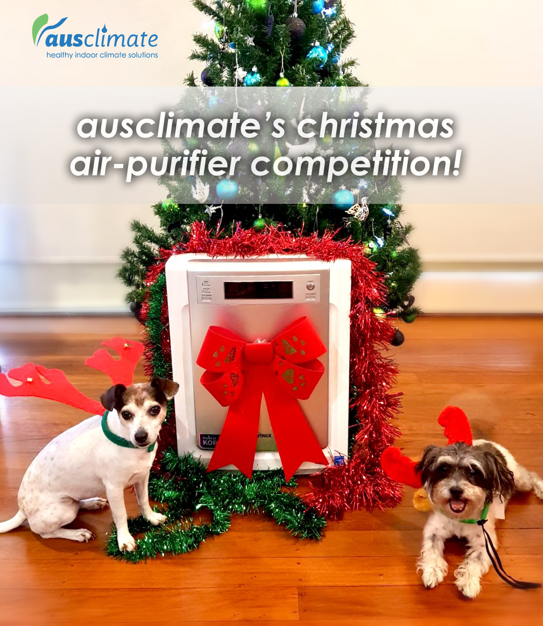 Christmas Air Purifier Competition Announcement