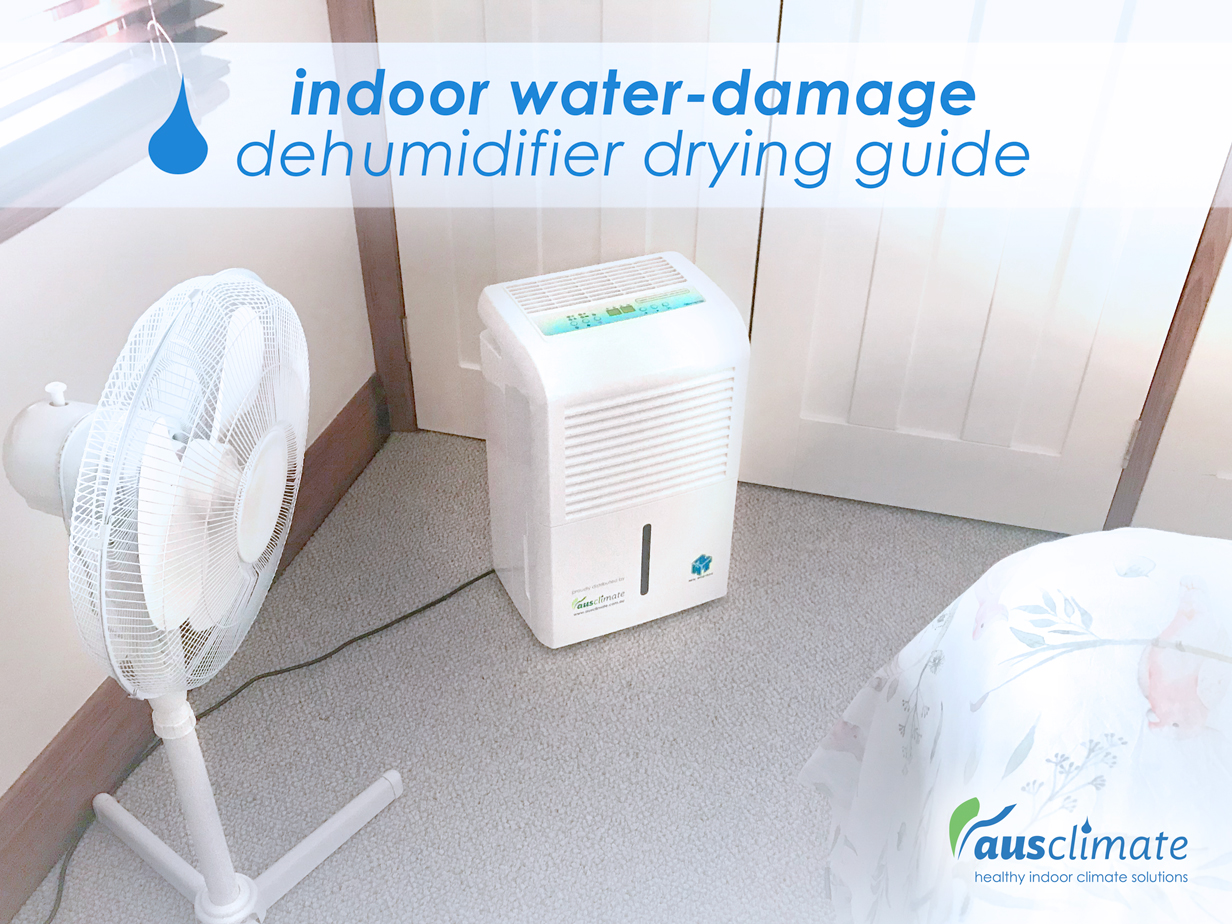 IndoorWaterDamage DehumidifierDryingGuide