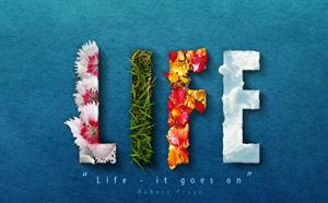 Life из цветов