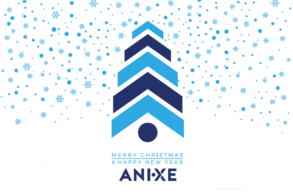 Merry Christmas & Happy New Year / ANIXE