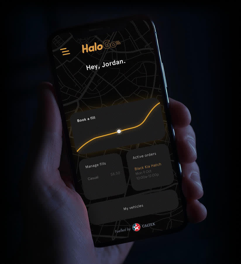 Hand holding a phone running the HaloGo app