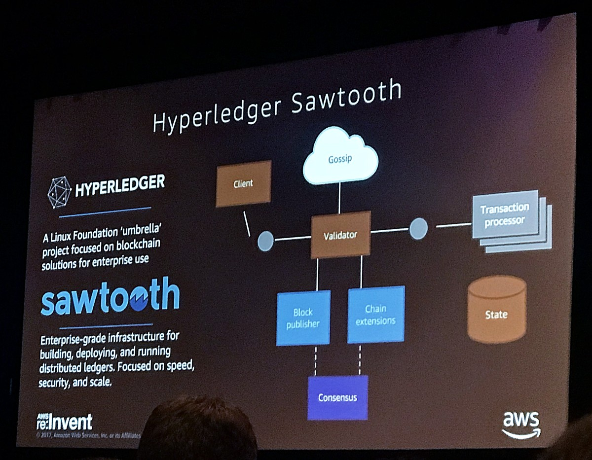 AWS Hyperledger Sawtooth Blockchain