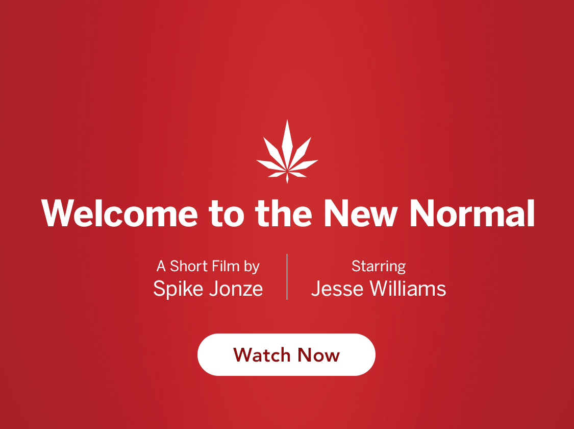 Spike Jonze MedMen the New Normal