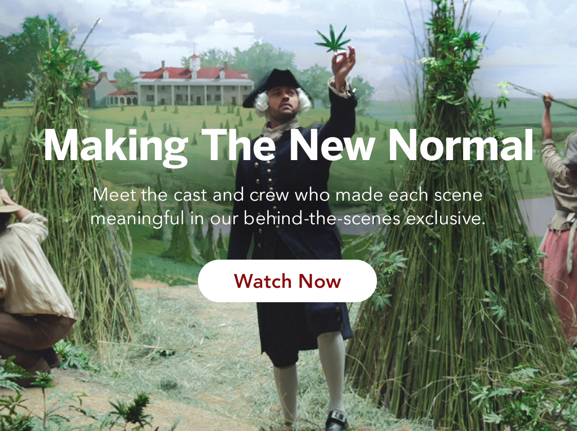 Go behind the scenes of MedMen's The New Normal
