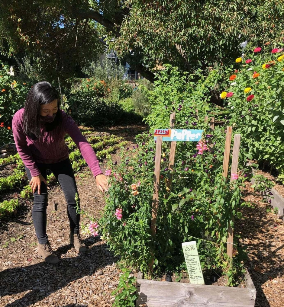 Michelle Wu visits Thornton Street urban farm and community garden.