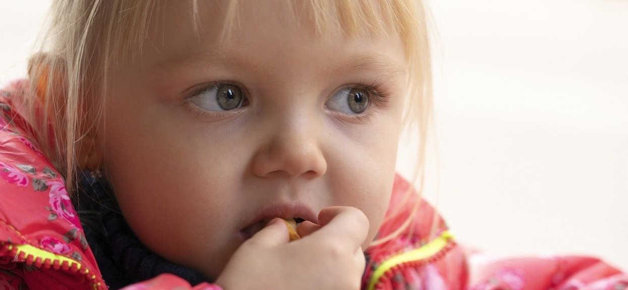 Owoce suszone w diecie dziecka