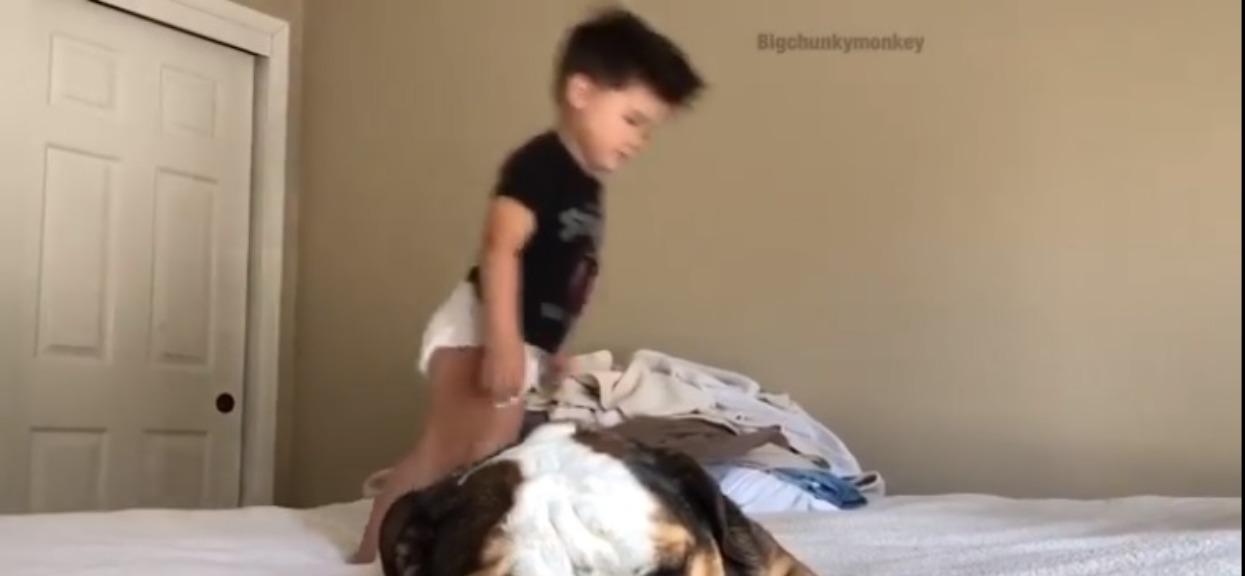 Dziecko, pies