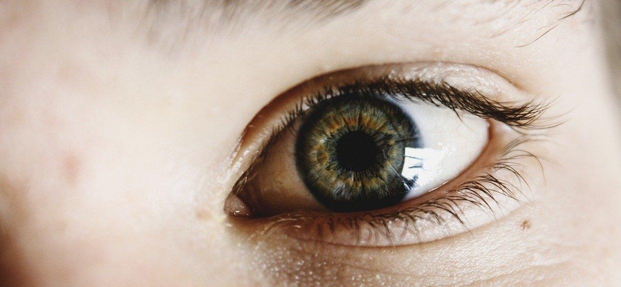 Kolor: oczu dziecka, przewidywanie