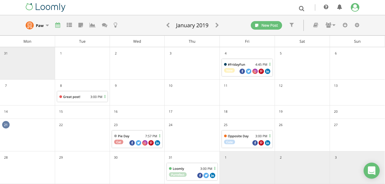 Content Scheduler in Loomly
