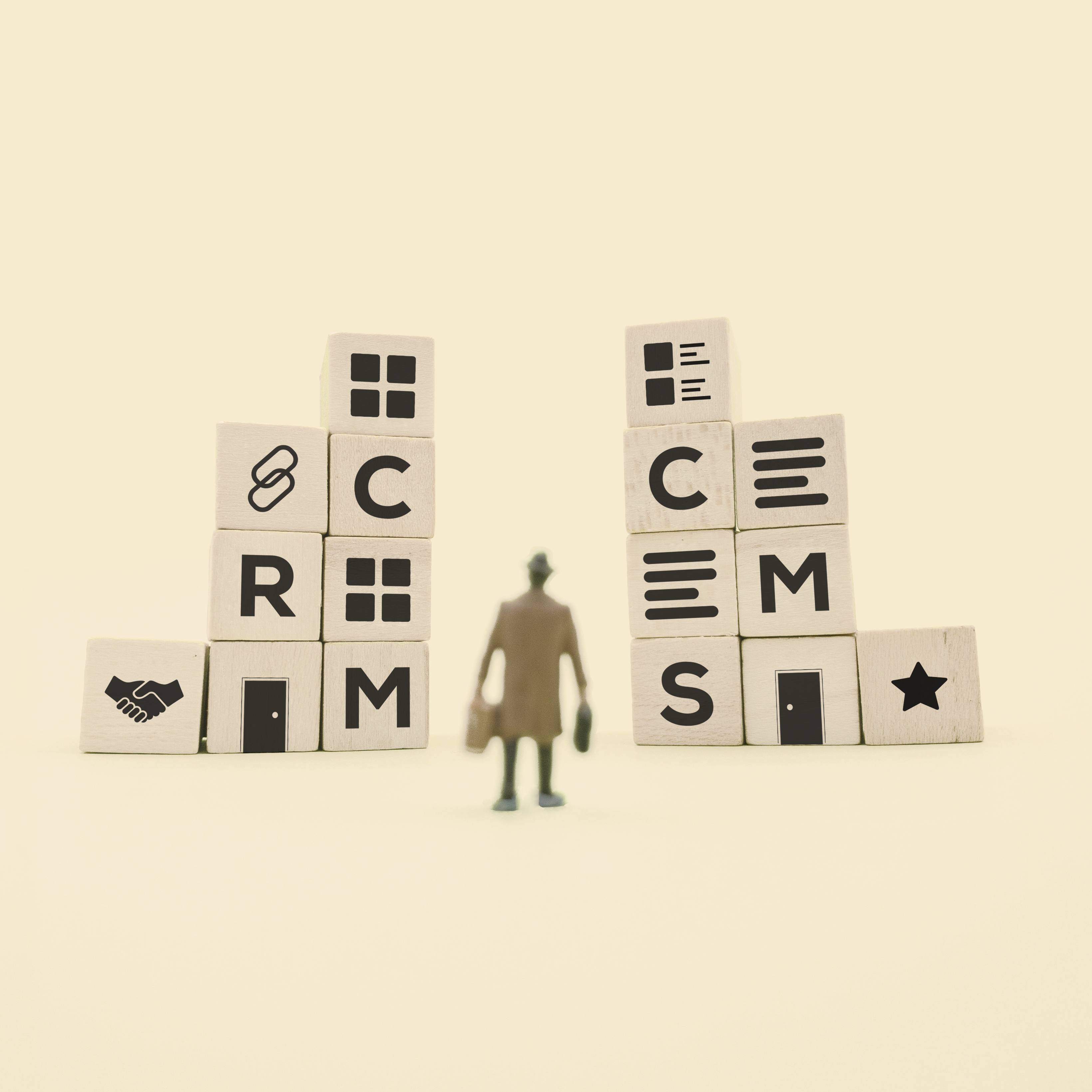 CRM vs CMS: Which does your business need?