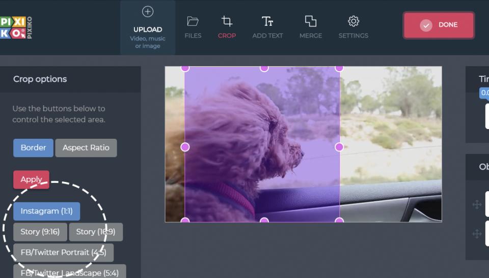Create videos for specific social media platforms in Pixiko