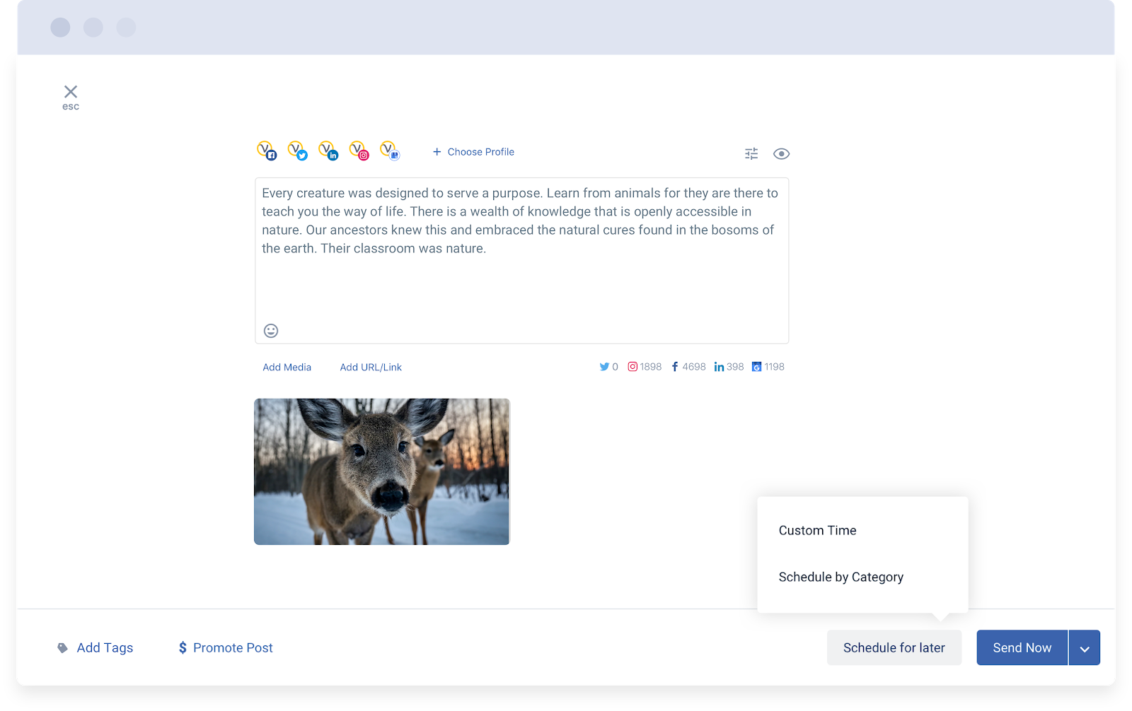 Scheduling a social media post in Statusbrew