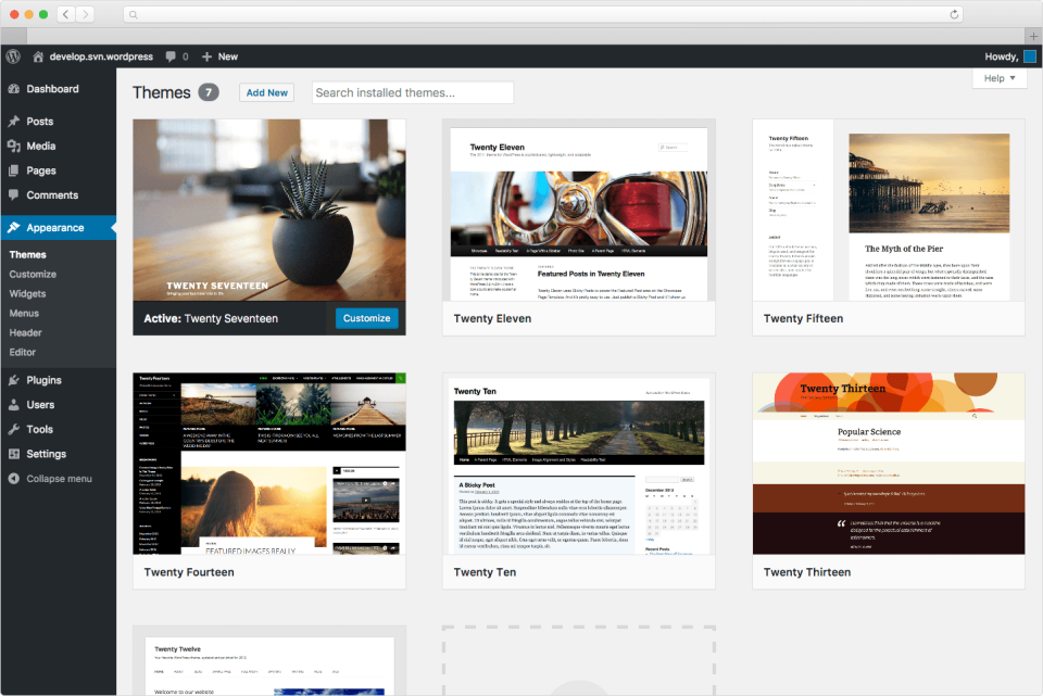 Themes in WordPress CMS