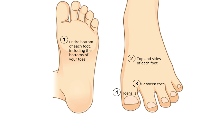 Illustration of how to check feet for signs of melanoma