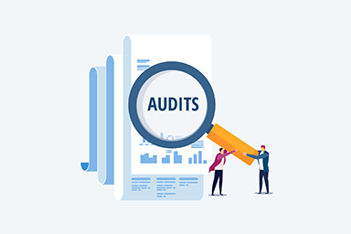 audits icon