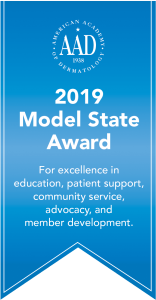 Model State Award ribbon