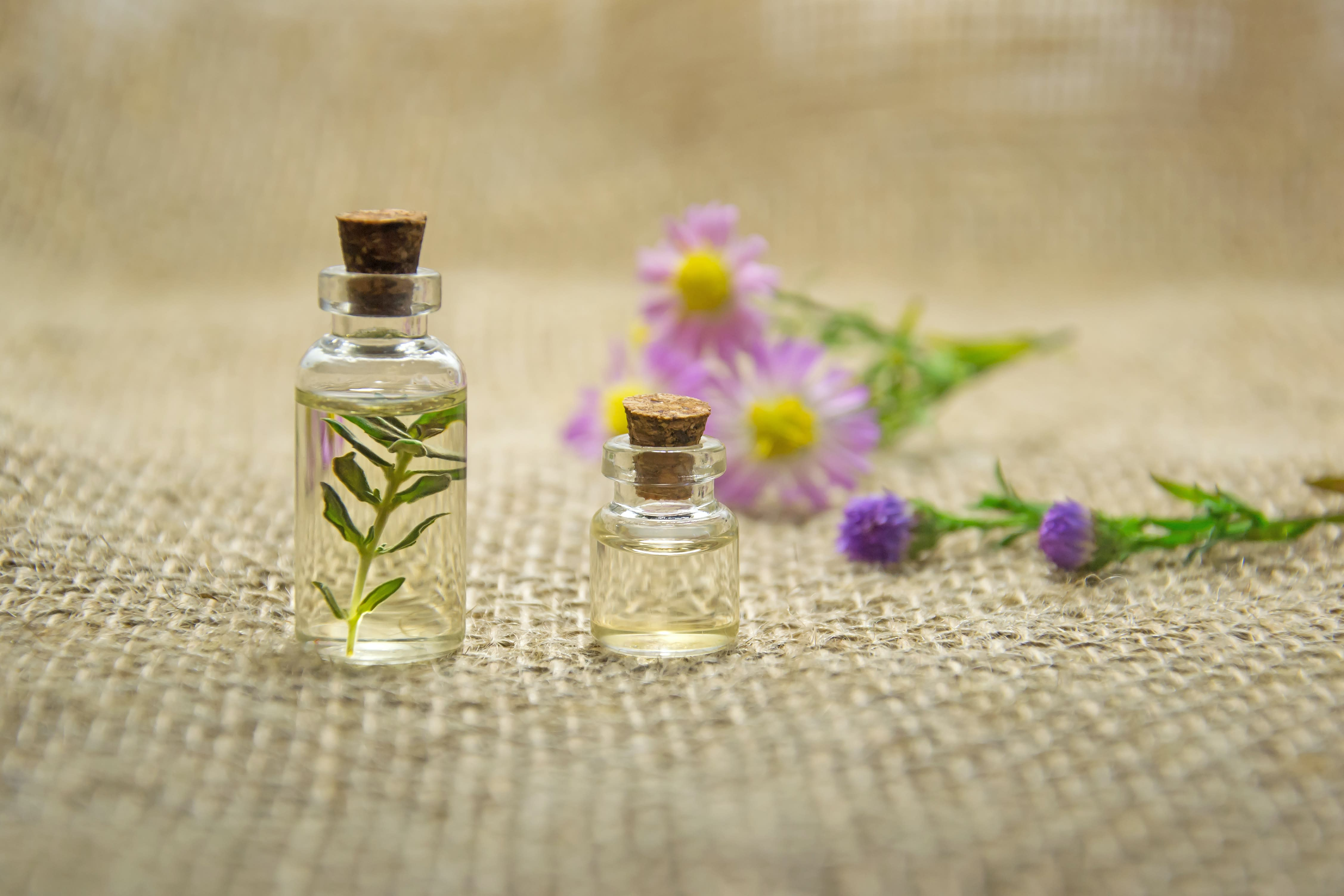 essential oils for dog hair loss