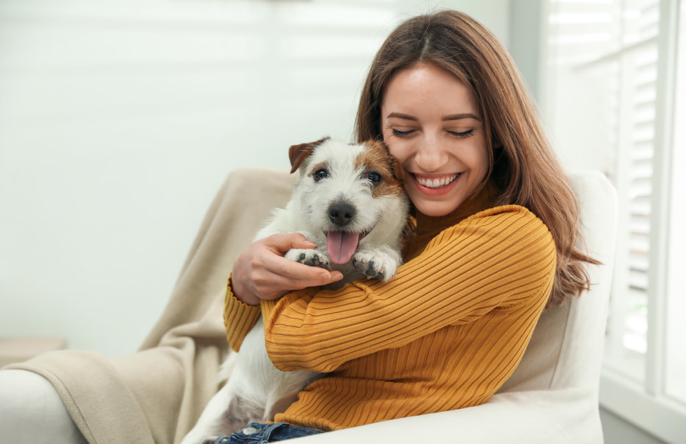 Treatment Options for Dog Anxiety