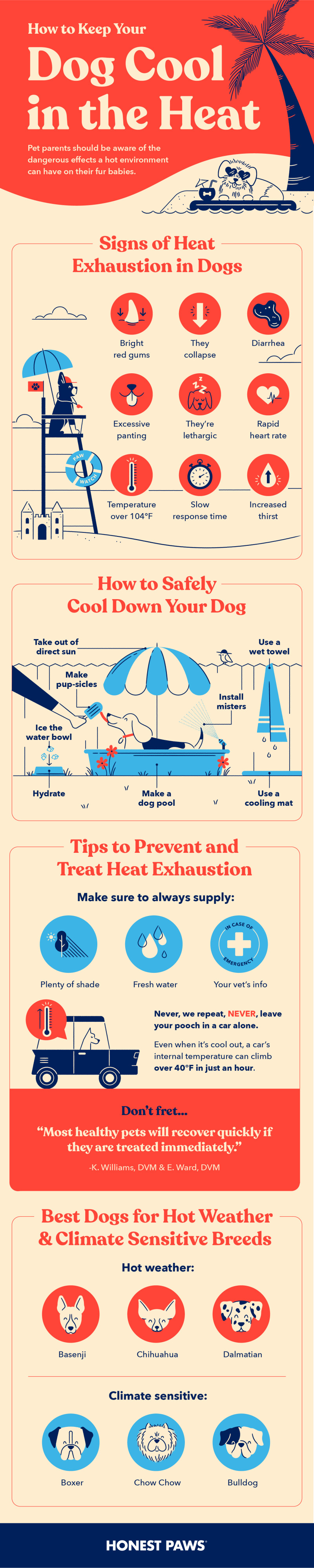 An infographic titled how to keep your dog cool in the heat including signs or heat exhaustion in dogs, how to safely cool down your dog, tips to prevent heat exhaustion and the best dogs for hot weather and climate sensitive breeds