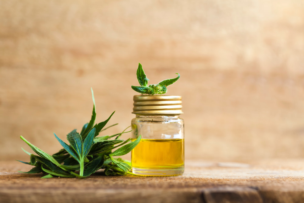 quality cbd oil for dogs