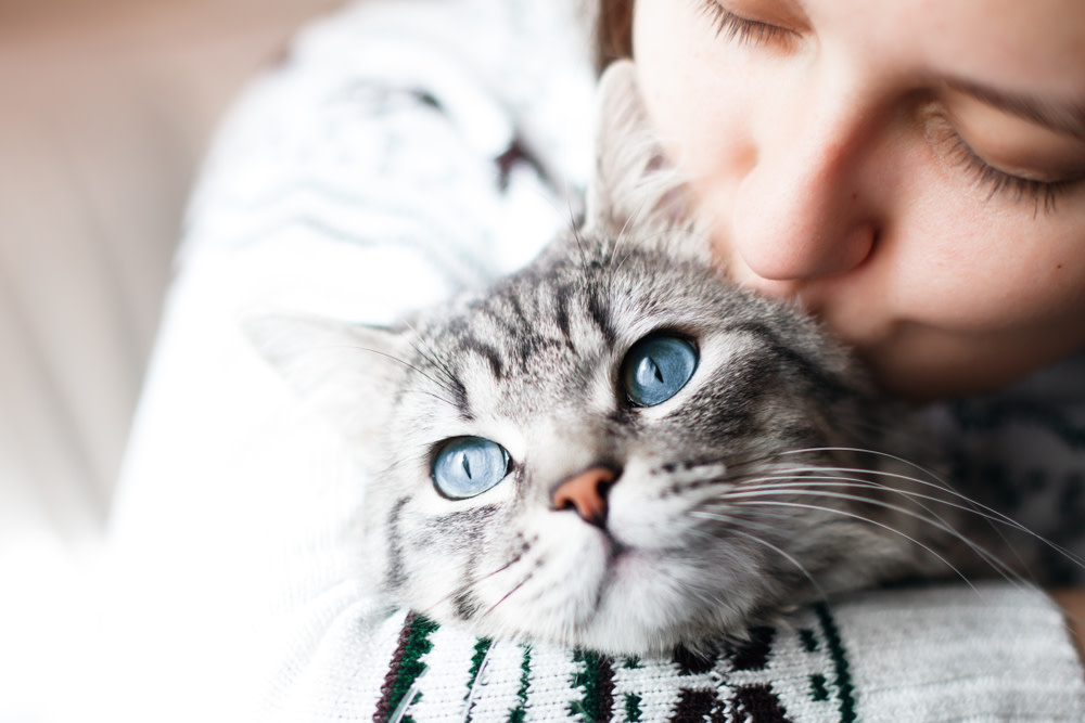 woman caring for her anxious cat