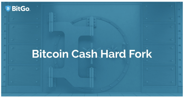 BitGo's Approach to the Upcoming BCH and ETH Hard Forks