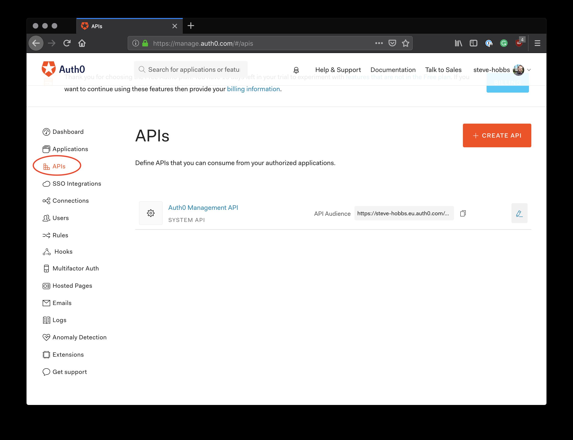The Auth0 API dashboard