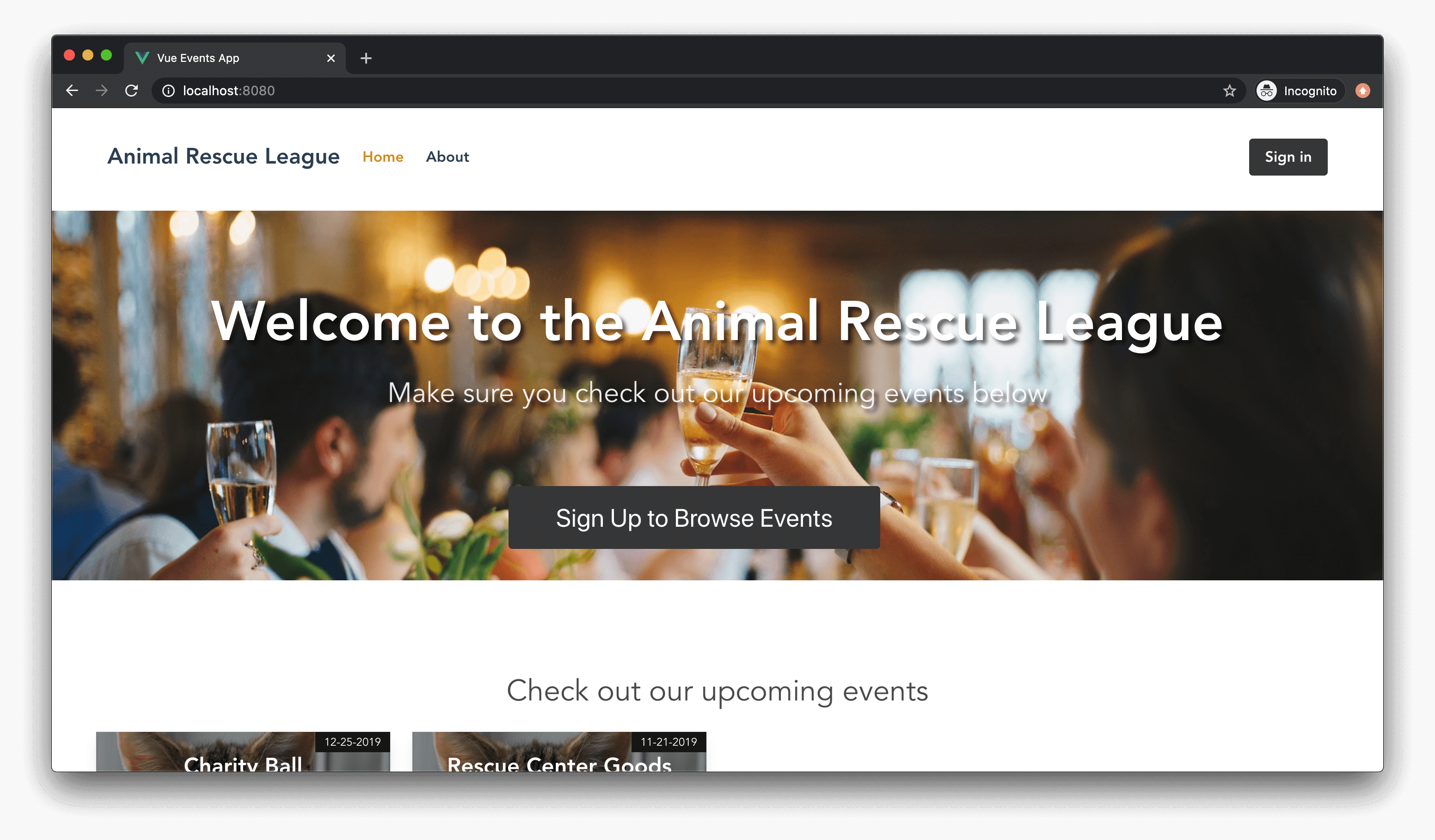 Initial view of the Vue app home page