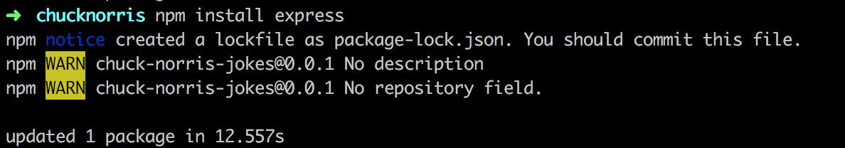 Install express via npm 5