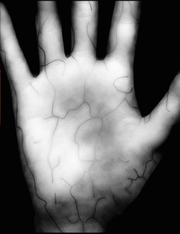 Palm scan