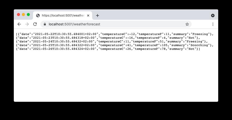 Sample Web API application output