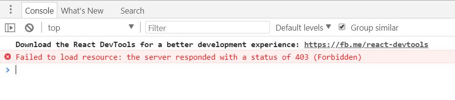 Forbidden error on developer tools