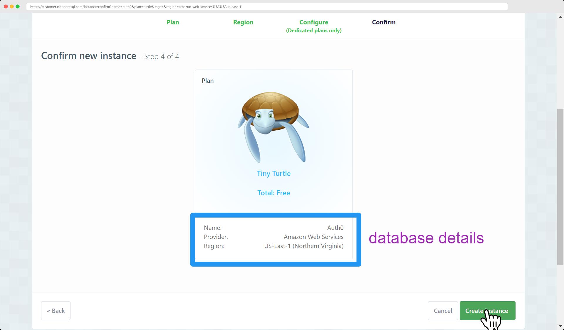 Elephantsql create instance confirmation page