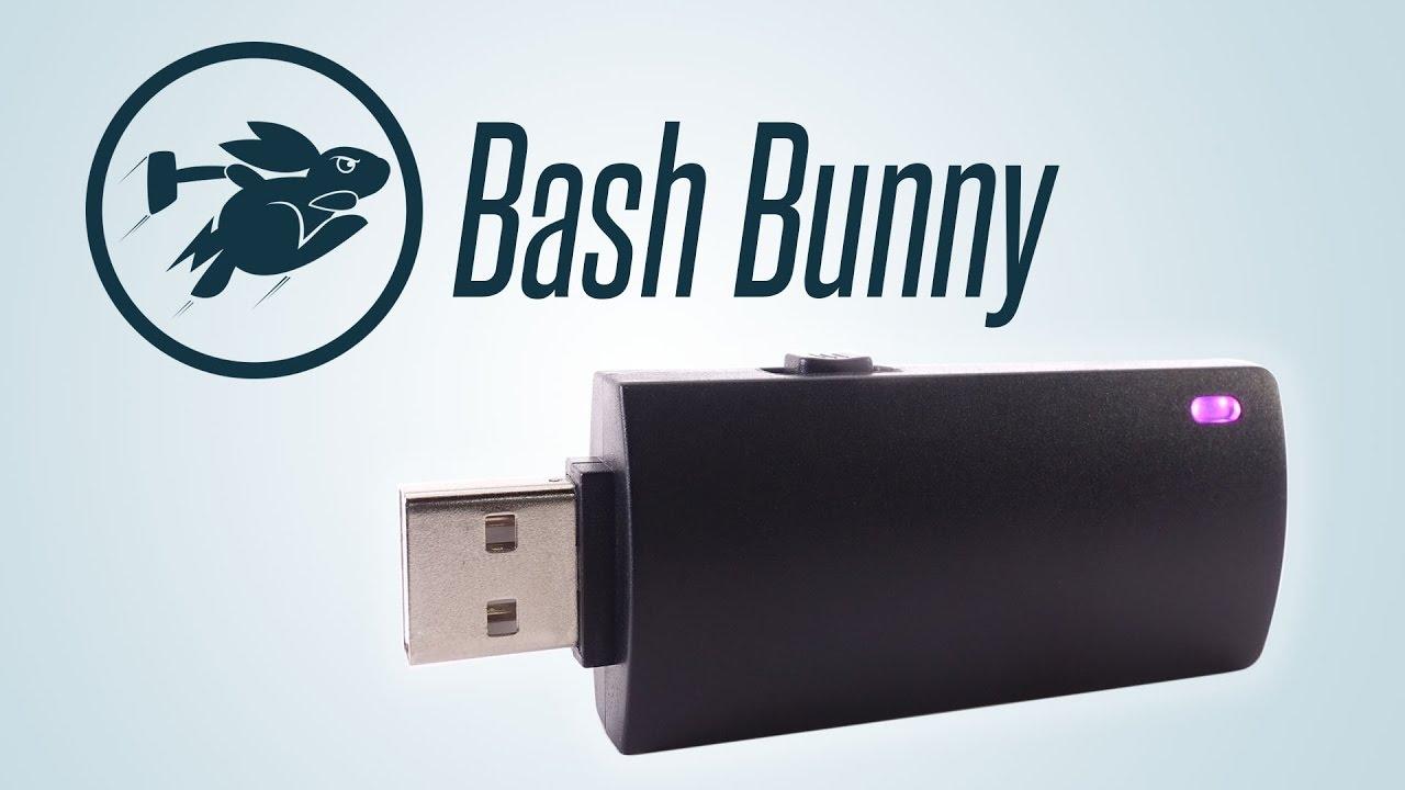 Bash Bunny USB platform.