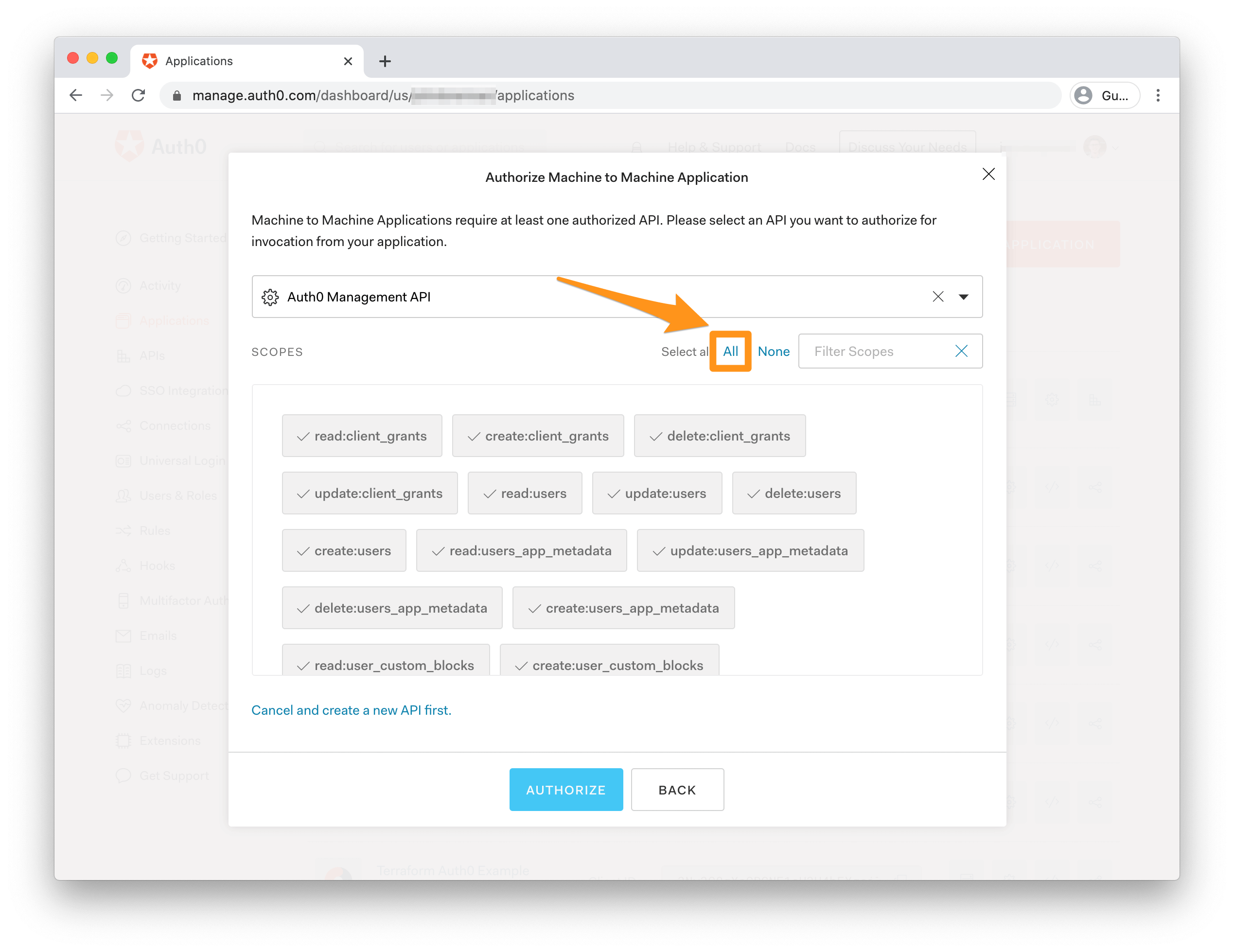 Scope selection and authorization