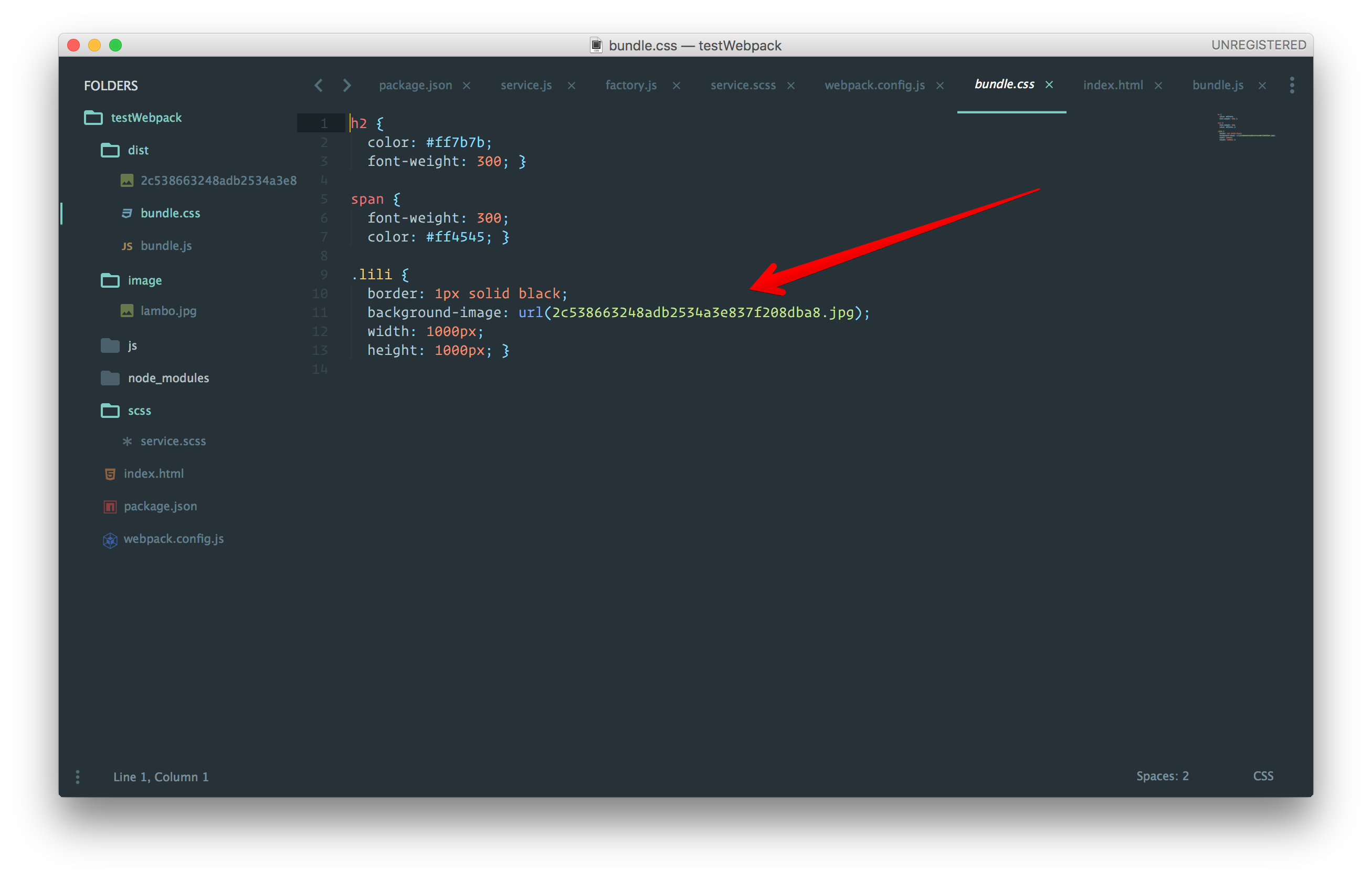 Webpack - Image loaded in CSS