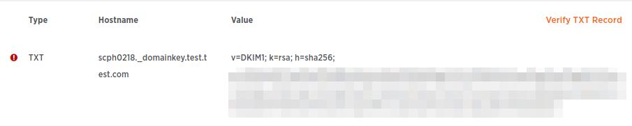 Special DNS entry