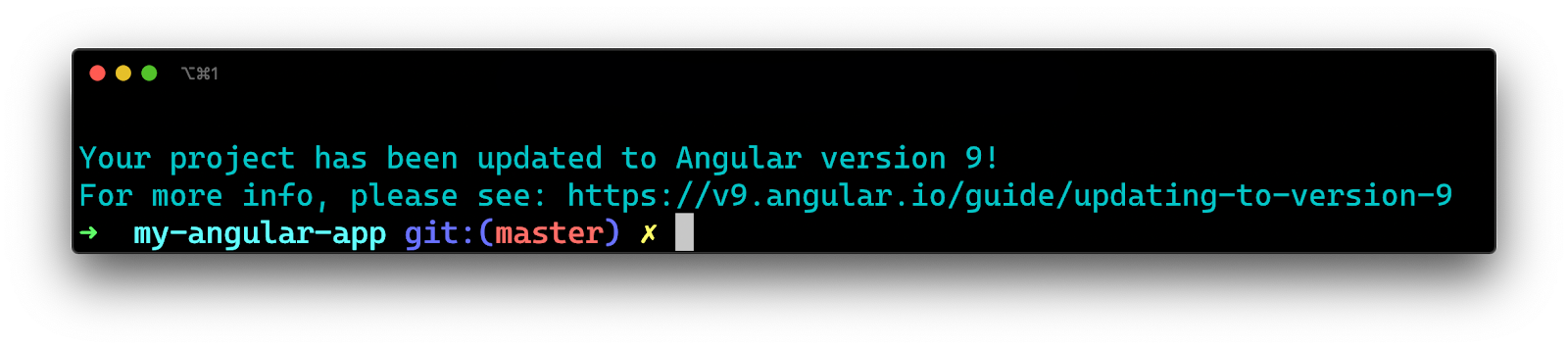 Terminal - Updating to Angular 9 confirmation