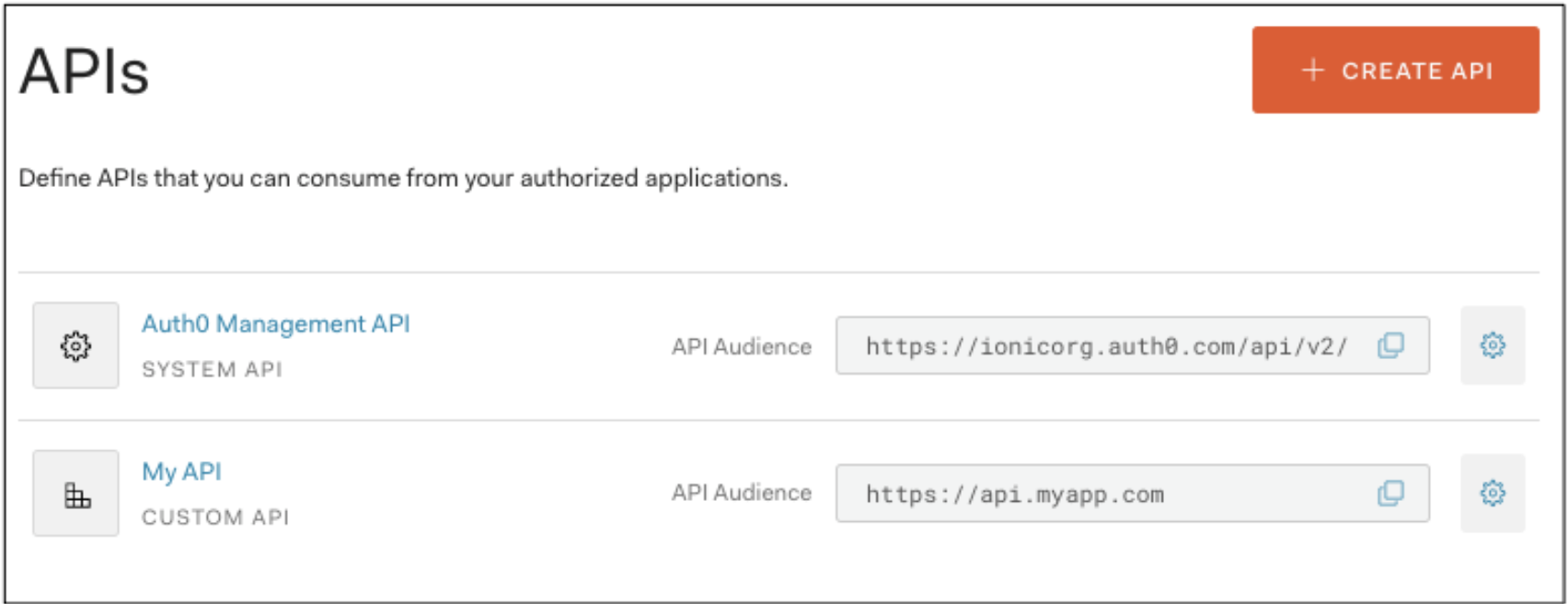 Finding the API Audience field