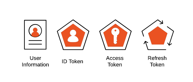 Identity icons for users, authentication, and API interaction graphics
