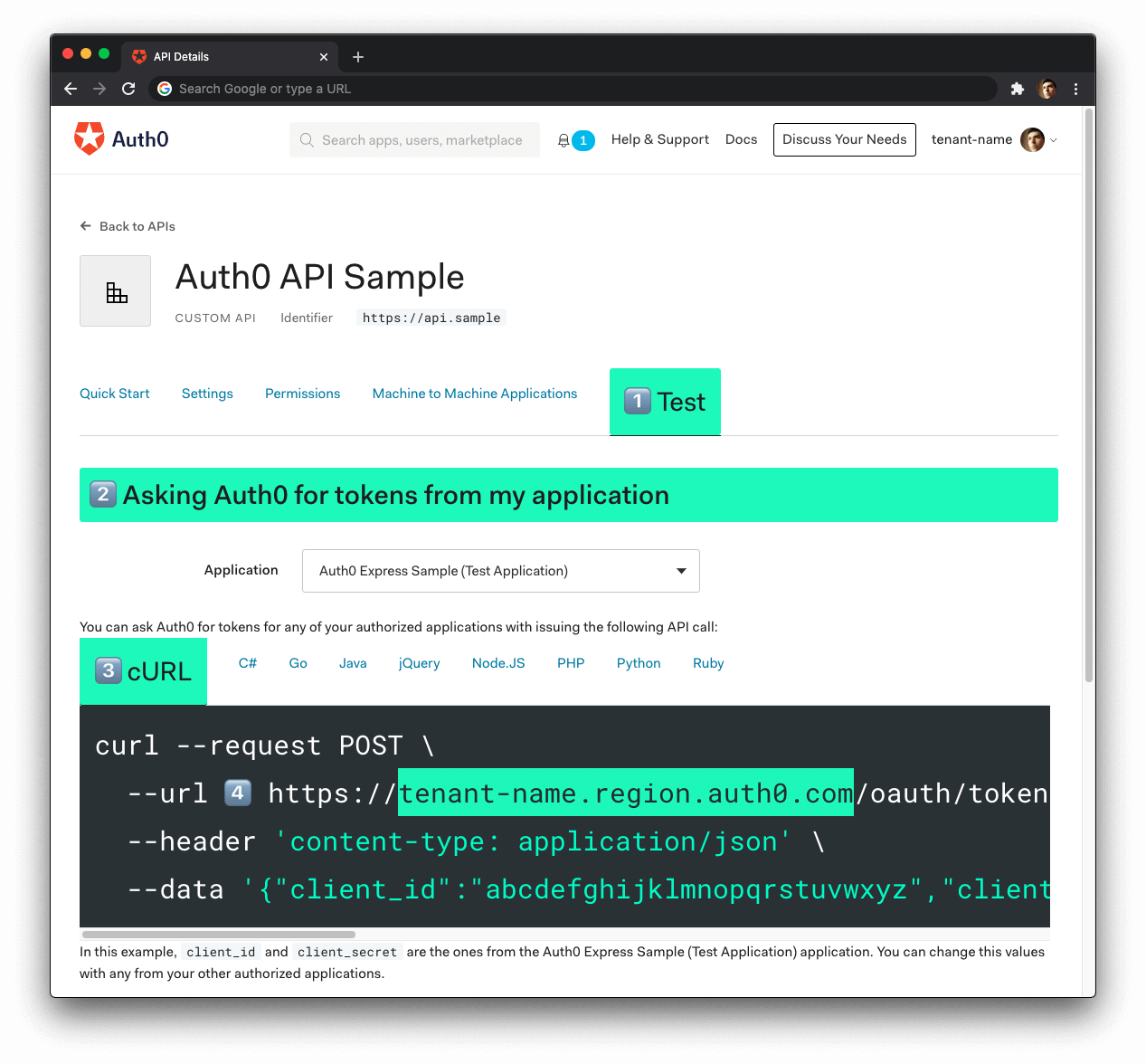 Get the Auth0 Domain to configure an API